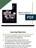 Schiffman CB10 PPT 11 Culture
