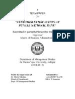 PNB Term Paper