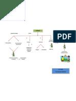 Mapa Conceptual de Piaget