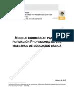 Modelo Curricular Para La Formacion Profesional de Los Docentes de Educacion Basica