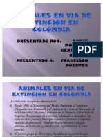 Animales en via de Extincion en Colombia