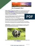 The Photographic Big-5