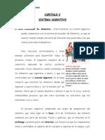 SISTEMA DIGESTIVO (2)