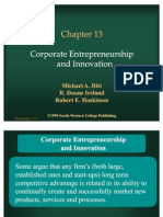 Corporate Entrepreneurship and Innovation (2)