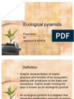 Ecological Pyramids, Energy Flow & Nutrient Cycle