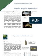 Manual Estudio Peces GE 2009