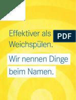 FDP Berlin - Kampagnenflyer 2011