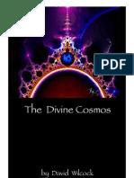 David Wilcock-The Divine Cosmos