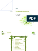 Gestion de Procesos BPM