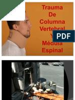 12 Columna y Extremidades Damian Villafuerte