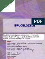 Curs Bruceloza i Net