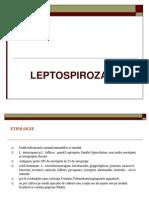 Curs Leptospiroza Net