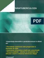 Curs Paratuberculoza Net