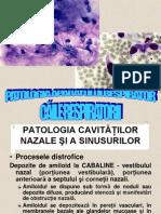 Anatomie patologica 2 Ap. respirator_căi_1