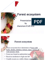 Forest Ecosystem by Jhansirani.R AP