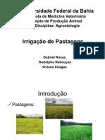 Irrigação / Agrostologia