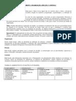 1.1. Planejamento, organização, direção e controle (1)