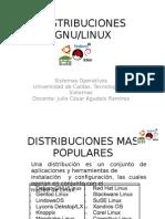 Distribuciones Gnu