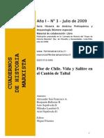 Libro Flor de Chile. Vida y Salitre en el cantón de Taltal