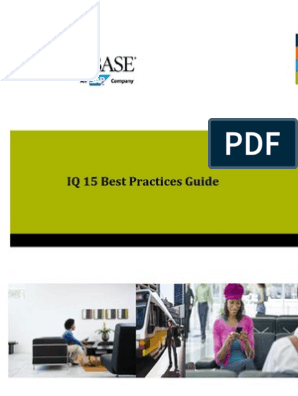 SybaseIQ15 Best Practices Wp20110718 | Database Index