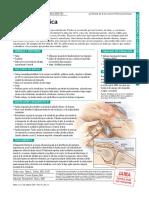 PDF Pat 040407