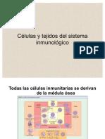 7. Células de la respuesta inmune1