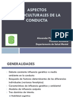 09 - 10 cultura y normalidad