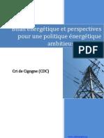 Bilan Et Perspectives Energetiques Au Niger - Par CrideCigogne