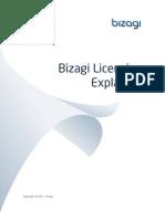 Bizagi Licensing Explained ENG
