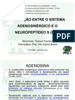 SEMINARIO 06.05