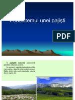 Lectie 6 - Ecosistemul Unei Pajisti