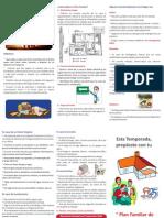 Triptico Plan Familiar 2011