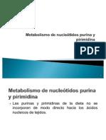 Metabolismo de nucleótidos purina y pirimidina
