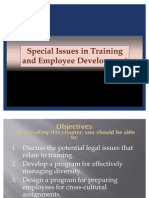 Special Issues in Training and Development - PPT 10