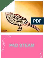 PAD STEAM MACHINE