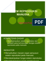 Human Reproductive System (Sistem Reproduksi Manusia)