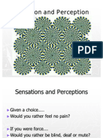 Sensation and Perception Expanded