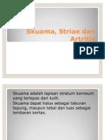 Skuama, Striae Dan Artritis