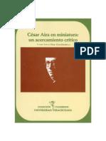 Contreras Vueltas Sobre El Realismo