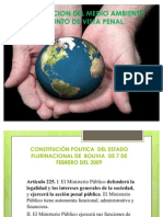 Proteccion Del Medio Ambiente Desde El Punto de Vista Penal