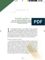 Dq2 Dq8 Enf Celiaca