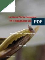 La Nueva Planta Hospedera de La Opsiphanes Cassina