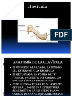 tecnicas radiologicas de  clavicula