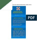 Caracteristicas y Principios Del Derecho Registral Mercantil 2