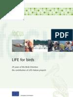 birds_en