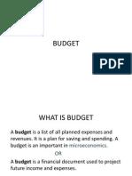Budget Sainbu