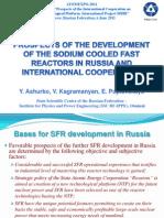 Перспективы развития быстрых натриевых реакторов в России и международное сотрудничество
