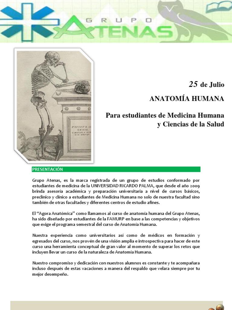 Increíble Curso De Anatomía Humana Foto - Imágenes de Anatomía ...