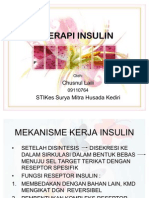 Terapi Insulin