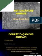 Domesticao Dos Animais